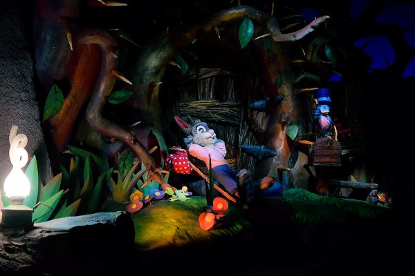 Splash Mountain Inside with Brer Rabbit Walt Disney World